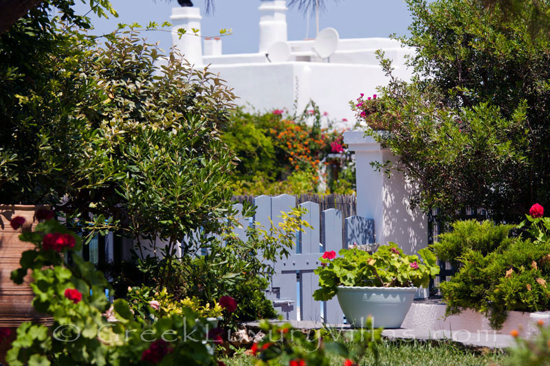 Garden of beachfront villa on Skyros