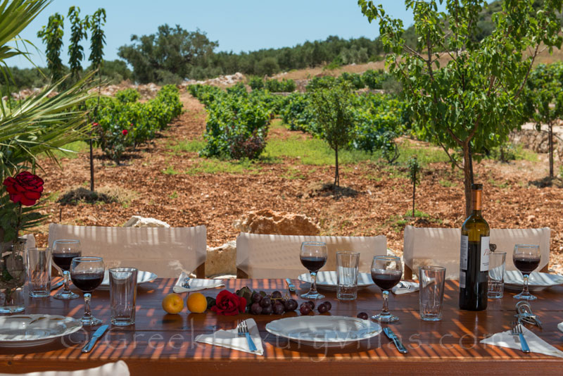 Dining outside with a view of the vineyard at a traditional villa in Zakynthos
